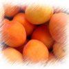 Sárgabarack, a gyümölcs képe